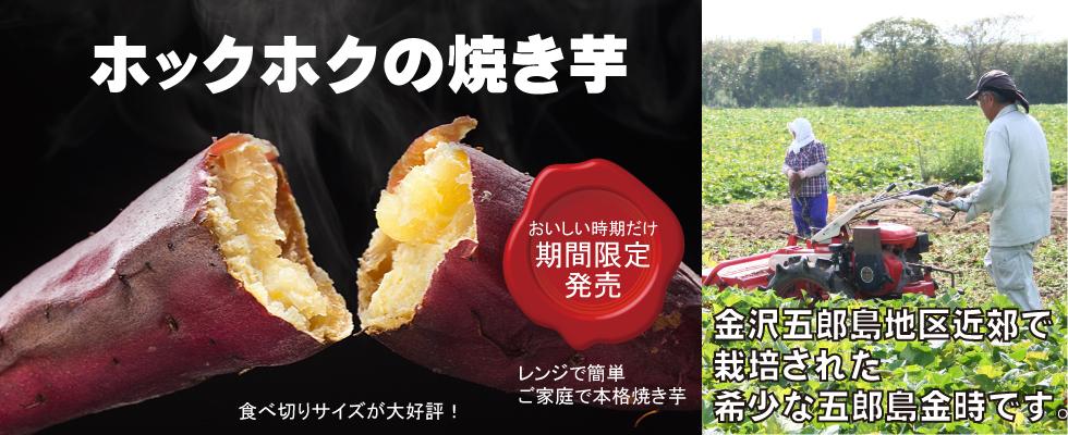 加賀野菜五郎島金時