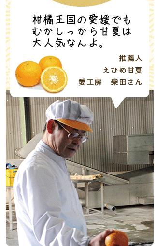 柑橘王国の愛媛でもむかしっから甘夏は大人気なんよ 推薦人 えひめ甘夏愛工房 柴田さん