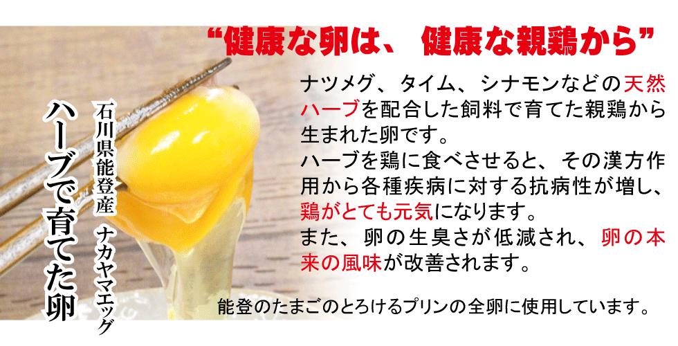 ナカヤマエッグのの能登鶏たまご